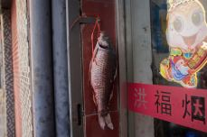 Prosperity Fish Decoration