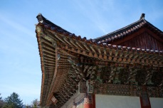 Roof of Pohyon Temple