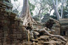 Angkor_8