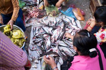 Phnom_9