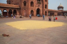 Delhi_4