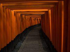 Gates at Fushimi Inari
