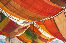 Pushkar_3